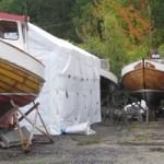 Träbåts maffian har intagit sin del av planen!